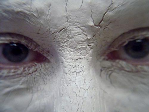 oiseau le bec boue hibou oiseau de proie cil fermer corps humain visage nez les yeux dessin œil tête peau organe regard regard yeux bleus Argile blanche